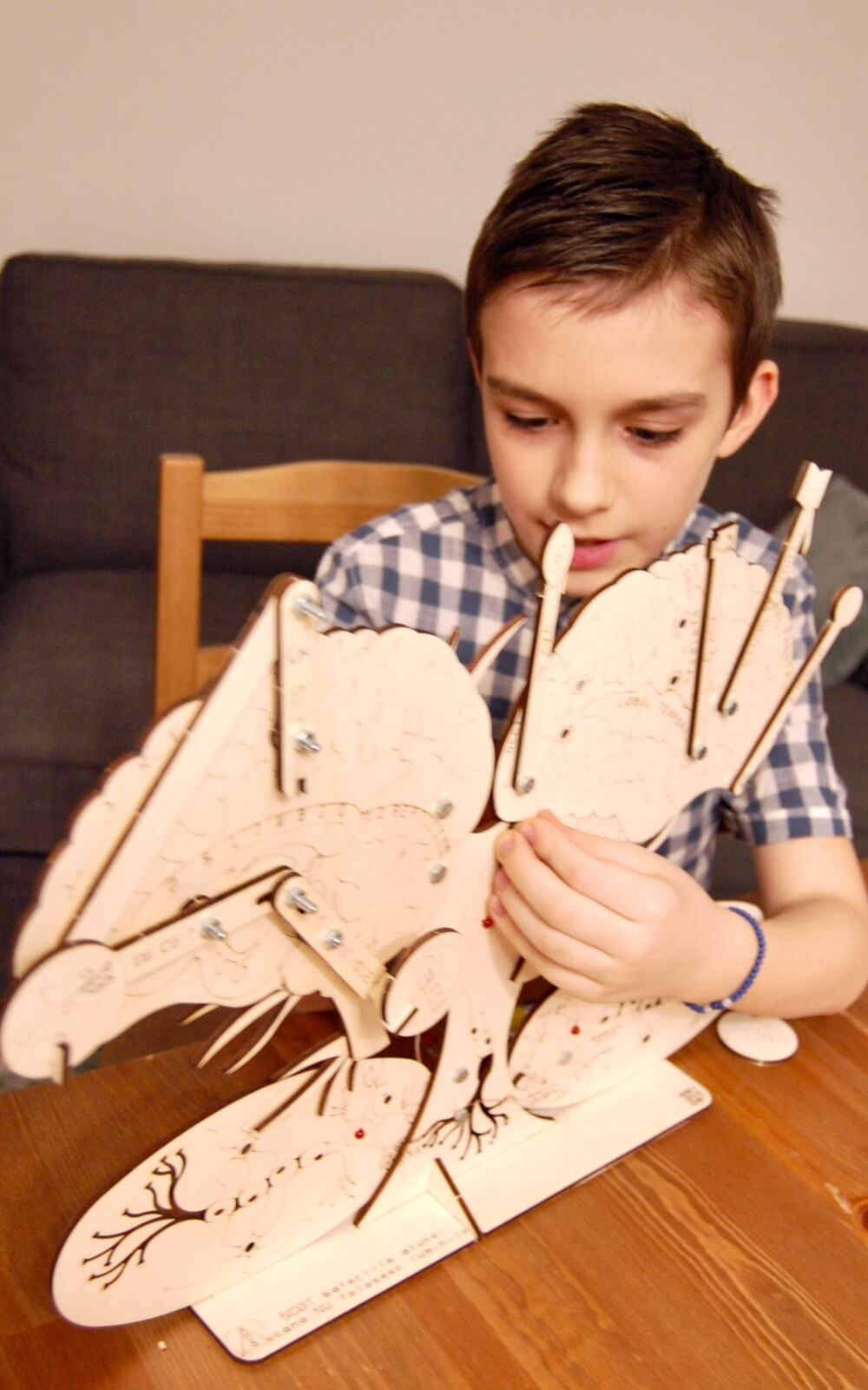 eematico steam kits cursuri de stiinta si contruire pentru copii